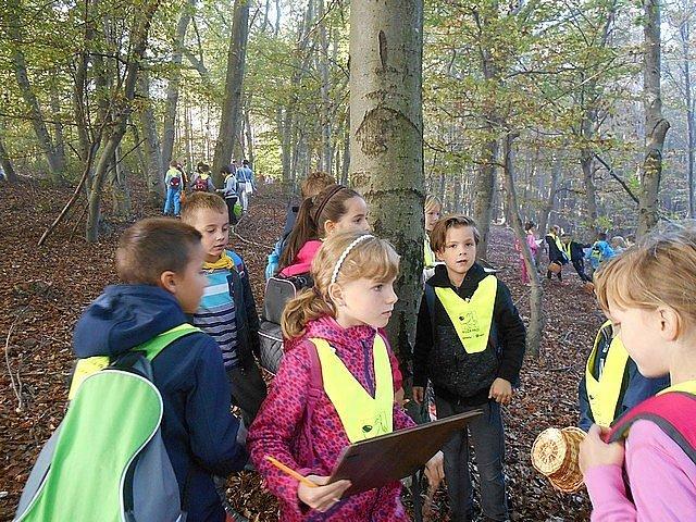naravoslovni-dan-gozd-004