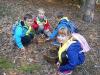 naravoslovni-dan-gozd-029